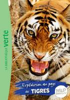 2, The wild immersion / Expédition au pays des tigres