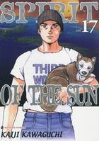 Spirit of the sun, Vol. 17