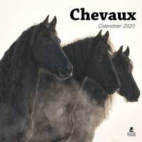 Chevaux / calendrier 2020