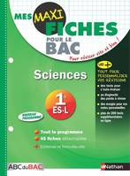 Mes MAXI Fiches Sciences 1re ES.L