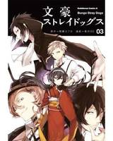 Bungô stray dogs, 3, Bungo stray dogs