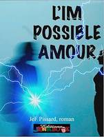 L'impossible amour, Roman