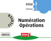 FICHIER NUMERATION-OPERATIONS CYCLE 2 NIVEAU 5