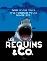 Les requins and co