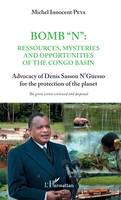 Bomb 'N': ressources, mysteries and opportunities of the Congo Basin, Advocacy of Denis Sassou N'Guesso for the protection of the planet - The green vision reviewed and deepened