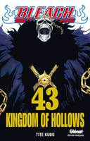 43, Bleach , Kingdom of hollows