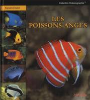 Les Poissons-Anges