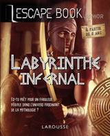 Escape book junior, Le Labyrinthe infernal, Escape Book junior