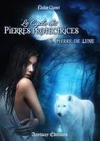 Pierre de Lune, Le Cycle des Pierres Protectrices, Tome 1