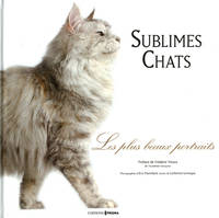 Sublimes chats, les plus beaux portraits
