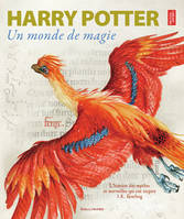 Harry Potter, un monde de magie