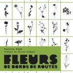 Fleurs de bords de routes